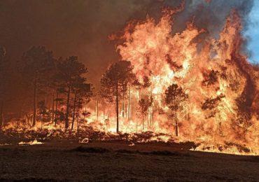 Catástrofe ecológica en España: los incendios arrasan miles de hectáreas en Cataluña durante el fin de semana
