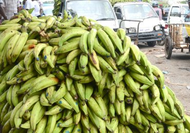 Ministerio de Agricultura promueve precios de plátanos tras el caso de Jean Alain