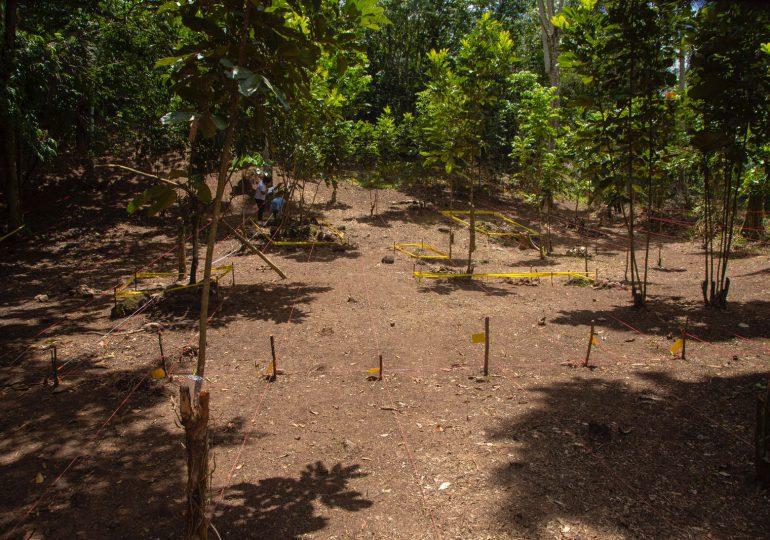 Entidades exploran restos de un posible ingenio de más de 500 años en el Higüero