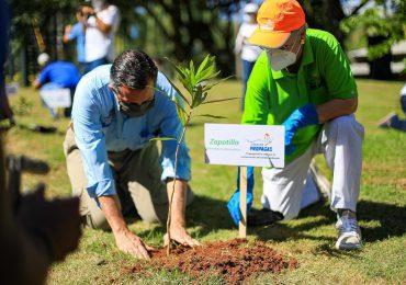 Medio Ambiente impacta en el desarrollo sostenible y la recuperación ambiental del país en primer año de gestión