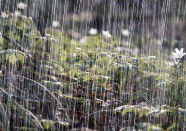 Vaguada provocará aguaceros y temperaturas calurosas en algunas zonas del país