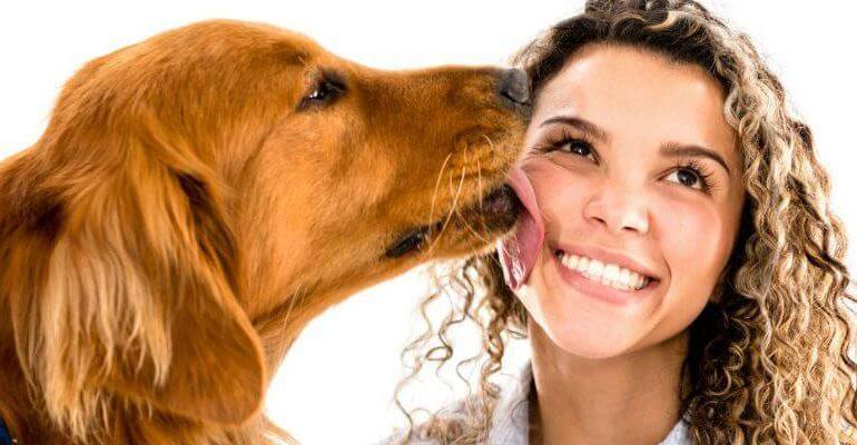¿Por qué los perros lamen la cara de las personas?
