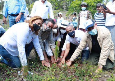 Medio Ambiente inicia Mes de la Reforestación con meta de plantar 3.5 millones de árboles