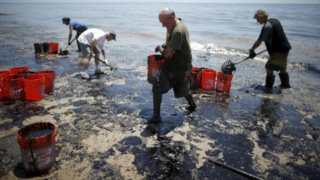 California se apresura a contener el vertido de petróleo mientras la fauna y las playas se ven afectadas