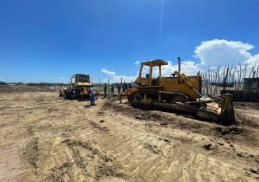 Medio Ambiente somete director de Amina por tala de árboles sin autorización